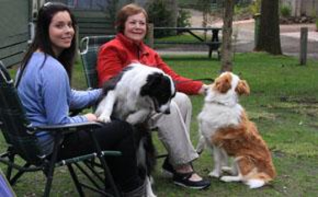 Pet Friendly Cabins